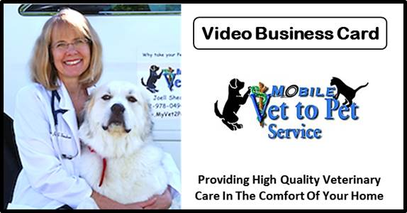 Mobile Vet to Pet Service